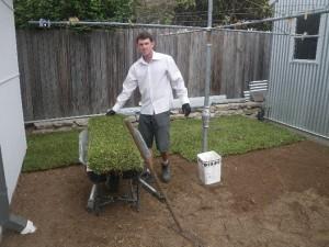 Feb 14, 2014: our wonderful Wollongong Uni intern, Daniel Jones, laying some grass.