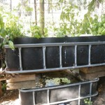 Reused materials used to make an Aquaponics system