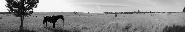 """Wide open spaces in """"Big Sky Country"""""""