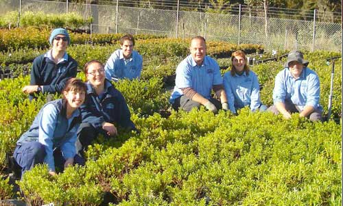 Some of the Challenge Team working at the Welby Garden Centre