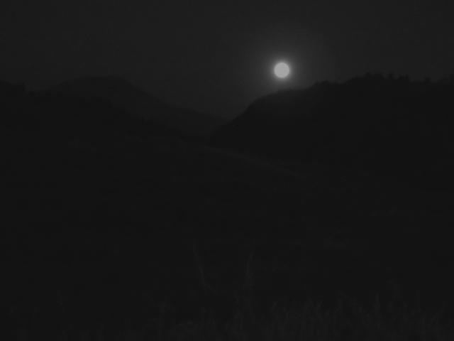 Full moon rising over Yellowstone Park